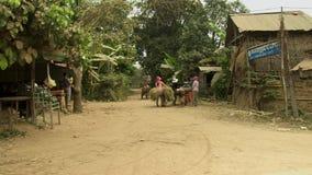 Тележка лошади, транспорт, Камбоджа, Юго-Восточная Азия сток-видео
