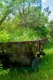 Тележка перерастанная с травой Стоковая Фотография
