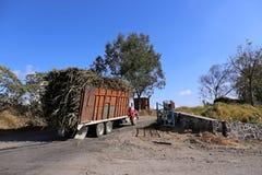 Тележка сахарного тростника, Queseria, Мексика, 2015-01-31 Стоковое Изображение