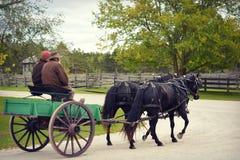 Тележка тяги лошади стоковое изображение rf