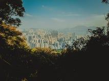 Телезритель Гонконга Стоковые Изображения