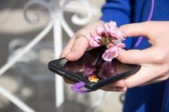 Телефон и цветок в женских руках Стоковая Фотография RF