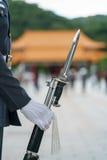 Телохранитель с винтовкой Стоковые Изображения