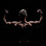 тело мышечное стоковая фотография