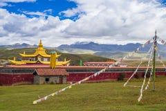 тибетец виска Стоковые Фотографии RF