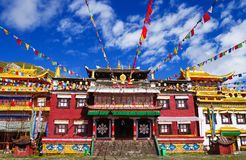 тибетец виска Стоковые Изображения RF