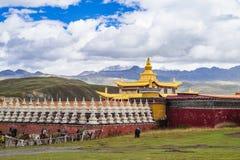 тибетец виска Стоковое Изображение RF