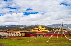 тибетец виска Стоковое Фото