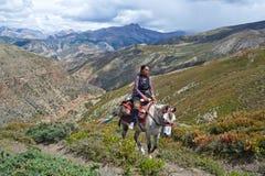 Тибетская девушка Стоковые Фотографии RF