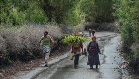 Тибетские люди идя на сельскую дорогу стоковое изображение rf