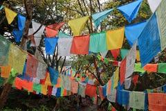 Тибетские флаги молитве в национальном парке Jiuzhaigou Сычуань Китая Стоковые Фото