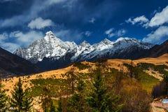Тибетский ландшафт Стоковые Изображения RF