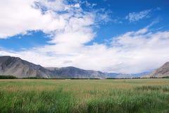 Тибетский пейзаж Стоковая Фотография RF