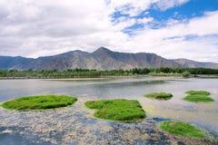 Тибетский пейзаж Стоковое Изображение RF