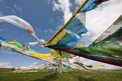 Тибетский флаг молитве Стоковые Изображения RF