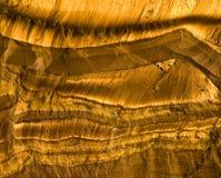 тигры глаза Стоковые Фотографии RF
