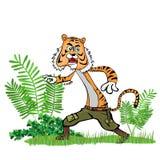 Тигр в джунглях Стоковое Изображение RF