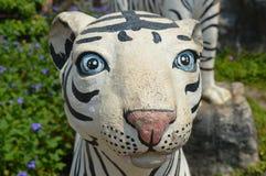 Тигр в парке Стоковые Фото