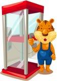 Тигр используя phonebooth Стоковые Изображения RF