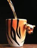 тигр кофе стоковая фотография rf