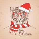 Тигр моды битника рождества животный одел шляпу Нового Года Стоковая Фотография