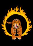 тигр пожара иллюстрация штока