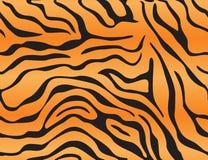 тигр предпосылки Стоковое Фото