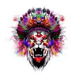 Тигр с половиной человеческого черепа Стоковые Фотографии RF