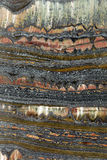 тигр утюга каменный Стоковое фото RF