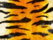 тигр шерсти Стоковое Фото