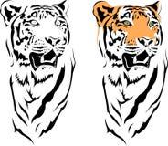 тигр 2010 Стоковое Изображение