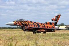 Тигр Eurofighter Стоковые Изображения