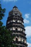 тигр pagoda холма Стоковое Изображение RF