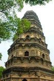 тигр pagoda холма иллюстрация вектора
