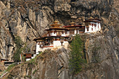 тигр taktshang гнездя s скита Бутана Стоковое Фото