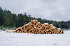 Тимберс вносит дальше лес в журнал в зиме Стоковые Фотографии RF
