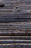 Тимберс плавая на реку Стоковое Фото