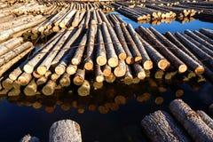 Тимберс плавая на реку Стоковые Фотографии RF