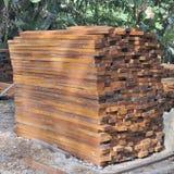 тимберс твёрдой древесины тропический Стоковое фото RF