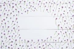 Тимианы обрамляют на белом деревянном положении квартиры Травы положенные в форме fr Стоковое фото RF