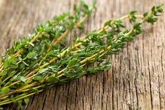 тимиан травы стоковое изображение