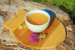 тимиан травяного чая Стоковые Изображения