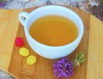тимиан травяного чая Стоковое Изображение