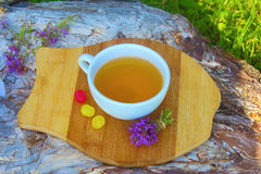тимиан травяного чая Стоковое Фото