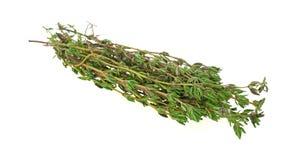 тимиан трав угла свежий Стоковое фото RF