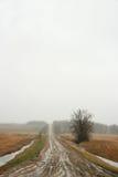 тинная дорога Стоковое фото RF