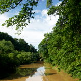 тинное река стоковая фотография
