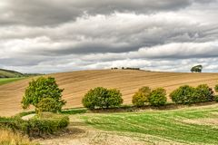 Типичная английская сельская местность в осени, с вспаханным полем стоковая фотография rf