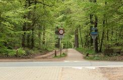 Типичная голландская природа на весенний день Стоковые Изображения RF