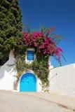Типичная дверь в Sidi Bou сказала Стоковая Фотография RF